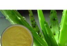 United States Aloe Vera Extract Market