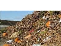 Global Wet Waste Management Market